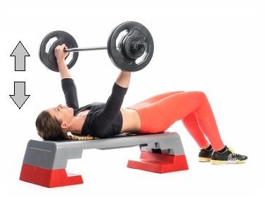 ganzkörper trainingsplan kurzhantel
